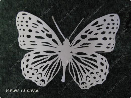 http://stranamasterov.ru/img3/i2011/02/21/img_5204.jpg