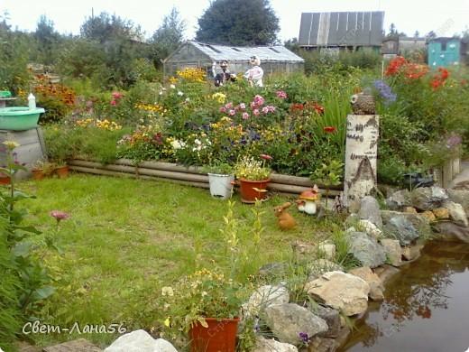 Сад в прошлом году. Осень. фото 1