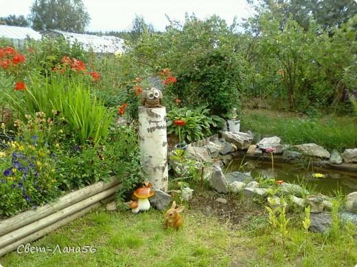 Сад в прошлом году. Осень. фото 2