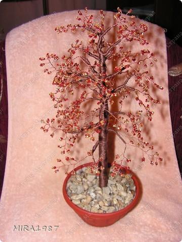 Дерево начальнику фото 2