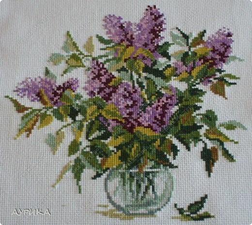 """Очень люблю цветы. Решила вышить цветочную """"галерею"""". И вот уже целый год планомерно иду к цели. фото 3"""
