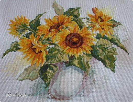 """Очень люблю цветы. Решила вышить цветочную """"галерею"""". И вот уже целый год планомерно иду к цели. фото 1"""