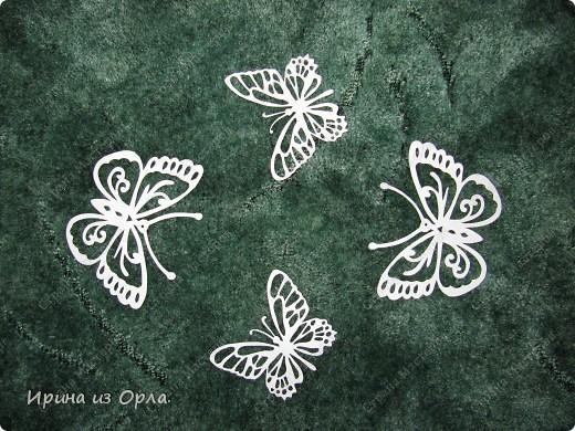 Так сильно хочется весны - надоели морозы! Как здорово, когда пригревает солнышко, слышен звон капели, щебетание птичек. Вот-вот и полетят первые бабочки! фото 8