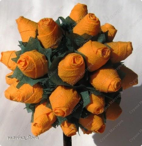 Чайные розы — это розы самых РАЗНЫХ ЦВЕТОВ. Чайная роза получила своё название не за цвет, а за аромат, напоминающий запах свежезаваренного чая. Считается, что именно ее лепестки лучше добавлять в чай. фото 4