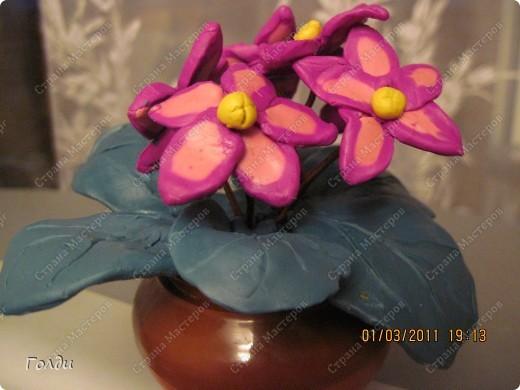 """подарок бабушке на день рождения. Делали по книге Татьяны Николаевны Просняковой """"Цветы"""". Цветы Вика сама делала, очень понравилось ей резать пластилин проволокой, на листочках она утомилась, доделывала я. бабушка в восторге,думала, что фиалки живые)) фото 1"""