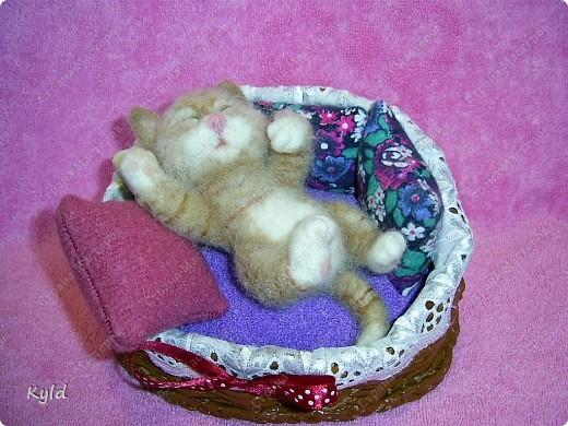 Появился у меня дома вот такой вот маленький соня))) Он все время спит, поэтому я сделала для него корзинку и тюфячок, и подушек побольше, чтобы он видел только самые мягкие и сладкие сны)) фото 1