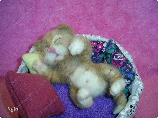 Появился у меня дома вот такой вот маленький соня))) Он все время спит, поэтому я сделала для него корзинку и тюфячок, и подушек побольше, чтобы он видел только самые мягкие и сладкие сны)) фото 2