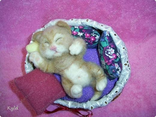 Появился у меня дома вот такой вот маленький соня))) Он все время спит, поэтому я сделала для него корзинку и тюфячок, и подушек побольше, чтобы он видел только самые мягкие и сладкие сны)) фото 5