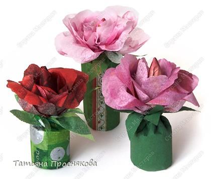Парад цветов фото 19