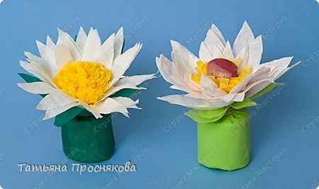 Парад цветов фото 27