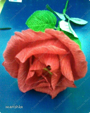 Букет из роз с шоколадными бонбоньерками. фото 2