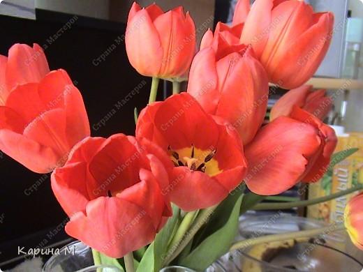Месяц март и день восьмой. Запахло в воздухе весной. Весну мы будем славить И разрешите Вас поздравить С международным женским днем! фото 1