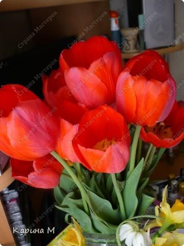 Месяц март и день восьмой. Запахло в воздухе весной. Весну мы будем славить И разрешите Вас поздравить С международным женским днем! фото 5
