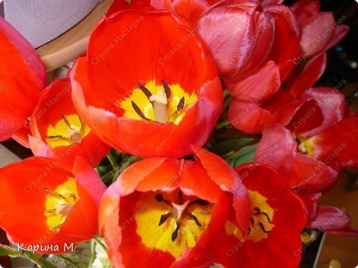 Месяц март и день восьмой. Запахло в воздухе весной. Весну мы будем славить И разрешите Вас поздравить С международным женским днем! фото 6