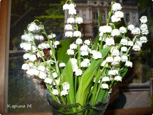 Месяц март и день восьмой. Запахло в воздухе весной. Весну мы будем славить И разрешите Вас поздравить С международным женским днем! фото 8