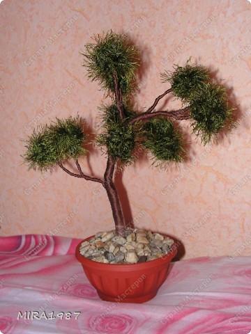Два дерева для моих сотрудниц на 8 марта фото 3