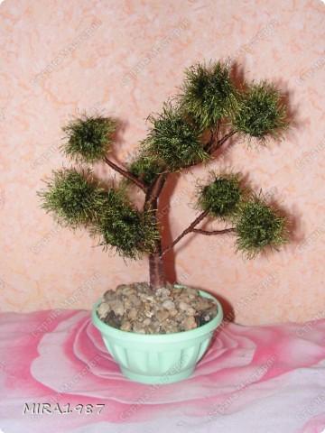 Два дерева для моих сотрудниц на 8 марта фото 4