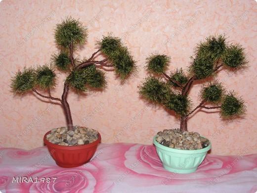 Два дерева для моих сотрудниц на 8 марта фото 1
