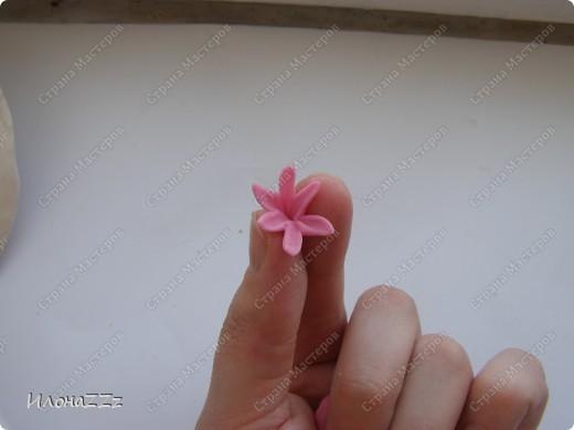 Этот МК для новичков в холодом фарфоре. Для тех, кто слепил первые розы и, окрыленый успехом, думает, на что еще замахнуться. Гиацтнт состоит из маленьких цветочков. Отличная практика. Первые цветочк выходят кривеньке да косенькие, но с каждым новым мастерство растет, а под конец легкость в пальцах появляется необыкновенная. фото 8