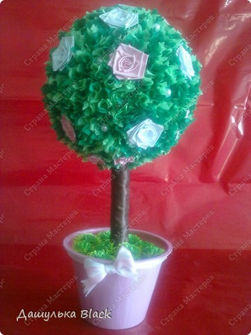 Вот такое деревце вырастила в подарок подружке на 8 марта... =) фото 1