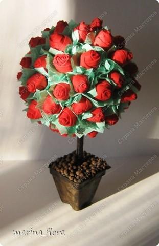 """""""— Завтра вечером Принц даёт бал, — шептал молодой Студент, — и моя милая тоже приглашена. Она сказала мне, что если я принесу ей красную розу, то она будет танцевать со мной до рассвета... Но в моём саду нет красной розы, и мне придётся сидеть в одиночестве, а она пройдёт мимо. Она даже не взглянет на меня, и сердце моё разорвется от горя. Юноша упал ничком на траву и заплакал. — О чём он плачет? — спросила маленькая зелёная ящерица. — Он плачет о красной розе! — воскликнули все, — ах, как смешно! Один Соловей понял и принял близко к сердцу страдания Студента. Он взмахнул крыльями и полетел к розовому кусту, что рос под окном Студента. — Дай мне красную розу! — воскликнул Соловей, — и я спою тебе свою лучшую песню. — Хм, если ты хочешь получить красную розу, молвил Розовый Куст, ты должен петь, прижавшись грудью к моему шипу. Мой шип пронзит твоё сердце, и твоя живая кровь перельётся в мои жилы и станет моей кровью.  — Смерть — дорогая цена за красную Розу! — воскликнул Соловей. — Но Любовь — дороже Жизни!""""  (Притча от Оскара Уайльда «Соловей и роза»)  фото 3"""