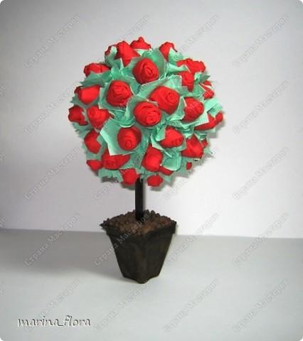 """""""— Завтра вечером Принц даёт бал, — шептал молодой Студент, — и моя милая тоже приглашена. Она сказала мне, что если я принесу ей красную розу, то она будет танцевать со мной до рассвета... Но в моём саду нет красной розы, и мне придётся сидеть в одиночестве, а она пройдёт мимо. Она даже не взглянет на меня, и сердце моё разорвется от горя. Юноша упал ничком на траву и заплакал. — О чём он плачет? — спросила маленькая зелёная ящерица. — Он плачет о красной розе! — воскликнули все, — ах, как смешно! Один Соловей понял и принял близко к сердцу страдания Студента. Он взмахнул крыльями и полетел к розовому кусту, что рос под окном Студента. — Дай мне красную розу! — воскликнул Соловей, — и я спою тебе свою лучшую песню. — Хм, если ты хочешь получить красную розу, молвил Розовый Куст, ты должен петь, прижавшись грудью к моему шипу. Мой шип пронзит твоё сердце, и твоя живая кровь перельётся в мои жилы и станет моей кровью.  — Смерть — дорогая цена за красную Розу! — воскликнул Соловей. — Но Любовь — дороже Жизни!""""  (Притча от Оскара Уайльда «Соловей и роза»)  фото 4"""