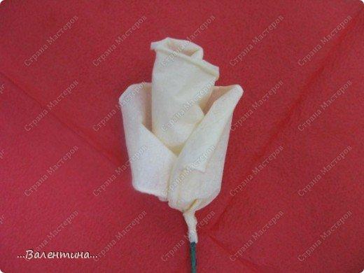 Мастер-класс Мастер-класс розы из бумажных салфеток Салфетки фото 17