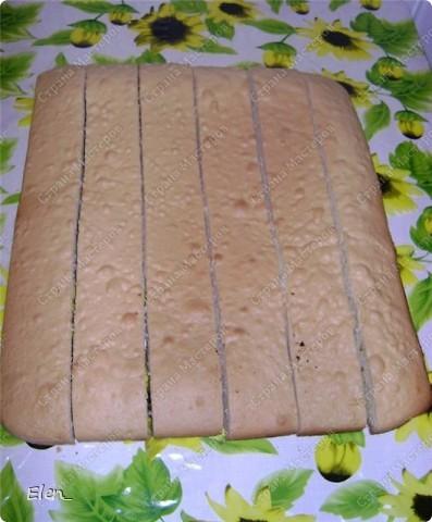 """Обратите внимание на срез торта...там коржи уложены необычным образом. Бисквит: Разогреть духовку до 180 градусов. Взбить миксером 9 яиц с 300 гр. сахара 20 минут (двадцать!!!). Постепенно всыпать 300 гр. муки с 1 ч. л. разрыхлителя. Добавить ванилин (я добавила лимонную эссенцию). Вылить всю массу на противень, застеленный пергаментом. Выпекать бисквит 25 минут. После истечении этого времени, не вынимая бисквит из духовки, дать ему там немного остыть. Вынуть бисквит из духовки и оставить на 1 час (я пеку бисквит заранее и храню его в холодильнике в полиэтиленовом пакете. Можно так хранить до 3-ёх суток). Крем """"Заварной кондитерский"""": Взбить 6 яиц с 250 гр. сахара до бела. Обжарить 3 ст. л. муки на сухой сковороде до золотистого цвета. Добавить муку в яично-сахарную смесь. Влить 750 мл. молока. Хорошо размешать и поставить на медленный огонь. Довести до кипения и остудить. Масло сливочное 400 гр растереть до бела. Взбивать миксером,добавляя в масло по 1 ст. л. заварного крема.Добавить ванилин (я опять добавила лимонную эссенцию). Заранее залить кипятком 300 гр. кураги. Дать постоять с 30 минут, слить воду и нарезать курагу на кусочки. Можно взять свежие фрукты (я как-то делала с ананасом), но с курагой мне нравится больше, так как тогда в торте присутствует кислинка. У нас всё готово для того,чтобы собирать торт. Приступаем...  фото 3"""