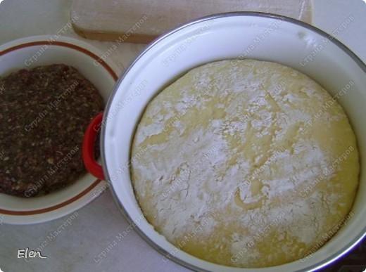 Тесто: 500 мл кефира 2 яйца 2 ст ложки раст масла соль 1 полную ст. л. сухих дрожжей мука до мягкого теста.  Фарш: говядина 400 гр лук репчатый 3 средних головки соль, перец... немного воды (пару столовых ложек)  Растворить в кефире дрожжи, вложить яйца, влить раст. масло, посолить, всыпать муку. Замесить тесто, убрать в темплое место и забыть про него часа на 3. А далее всё ясно без слов. Просто фотографии. фото 2