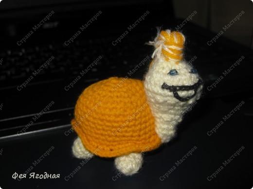 Черепашка (Амигуруми) фото 1