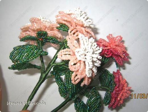 Вот про такой букет цветов я вам сегодня расскажу))) фото 18