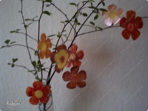 Пришла весна,на деревьях расцвели цветы ... из пластика фото 3