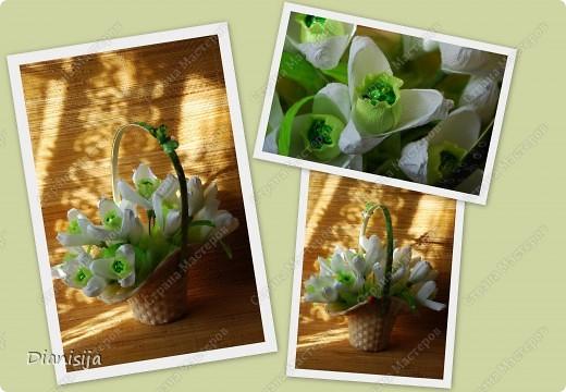 Мои первые цветочки ... подарок маме на 8 марта :) фото 1