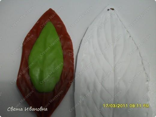 Мастер-класс Лепка Эустома заключение МК листва Фарфор холодный фото 6.