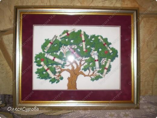 Денежное дерево...  фото 1