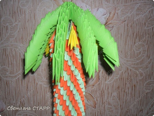 Вот моя пальма. фото 2