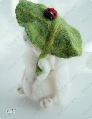 вот представьте как бывает! поливаю я сегодня цветы и вижу, что под одним листочком кто-то притаился.... Осторожненько я листочек приподняла а там..... фото 7