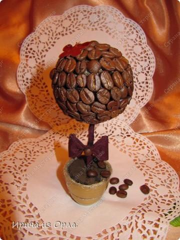 В Стране Мастеров сейчас несчетное количество очаровательных кофейных деревьев! Дочка тоже захотела вырастить кофейное дерево (для мамочки). Я идею, конечно, поддержала - уж очень люблю запах кофе!!! фото 2