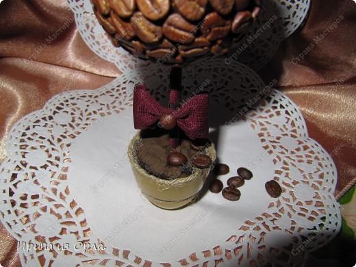 В Стране Мастеров сейчас несчетное количество очаровательных кофейных деревьев! Дочка тоже захотела вырастить кофейное дерево (для мамочки). Я идею, конечно, поддержала - уж очень люблю запах кофе!!! фото 3