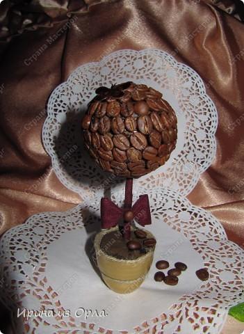 В Стране Мастеров сейчас несчетное количество очаровательных кофейных деревьев! Дочка тоже захотела вырастить кофейное дерево (для мамочки). Я идею, конечно, поддержала - уж очень люблю запах кофе!!! фото 5