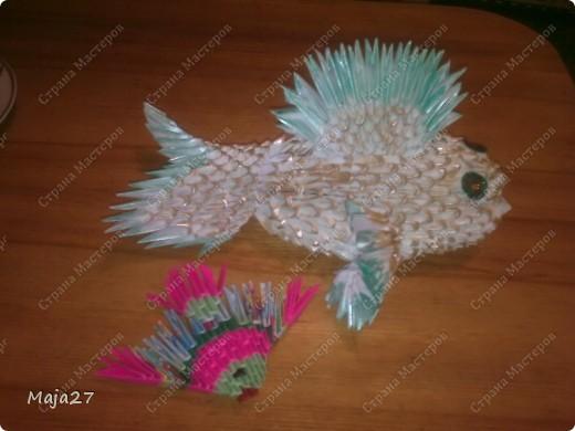 Рыба и рыбка.