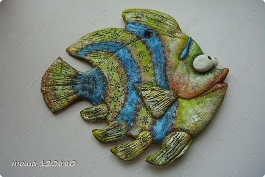 рыбка-япония (с сайта цветная рыба) фото 7