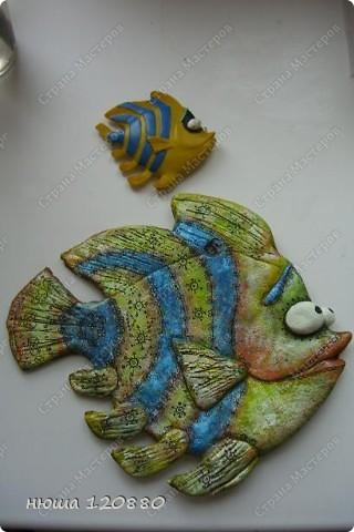 рыбка-япония (с сайта цветная рыба) фото 5