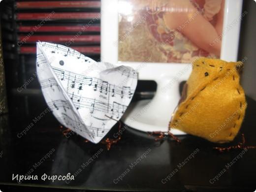 Птичулька. фото 1