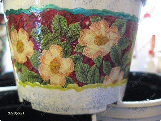 Дома были копеечные горшки для рассады..... я их обклеила фрагментами салфеток... (до этого прочпокала краской).... и покрыла лаком....   фото 2