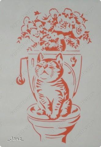 Кошачий инь-янь (поздравляю всех мастериц сайта с 1 апреля) фото 2