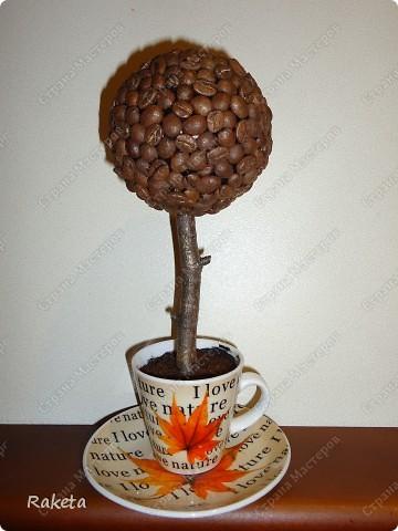 """Ходила-бродила по удивительной """"Стране Мастеров"""", набрела на кофейные плантации, и так впечатлилась, что """"вырастила"""" свои деревца. Подарили мне как то кофейный сервиз, который несколько лет стоял невостребованный, потому как не пьют в нашем доме кофе из таких мелких чашечек, не приучены. Не колебаясь не секунды, пустила сервизик в дело. На каждой паре был разный рисунок.  Это деревце было подарено маме, она обувщик, поэтому чашка с туфелькой фото 3"""