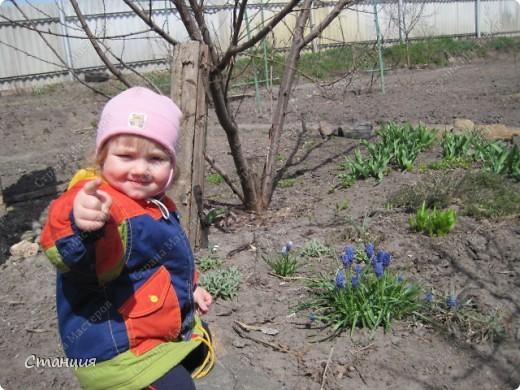 Да, весна пожалуй, не слишком торопится к нам. каждый день дожди и град. Я так соскучилась по цветам. В этом году обустраиваем двор и перепланируем клумбу, так что мои садовые жители скоро разойдутся по новым местам. А пока любуюсь фотографиями прошлых лет:) И с вами хочу поделиться этой красотой. фото 6