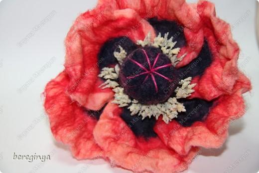 роза голубая фото 2