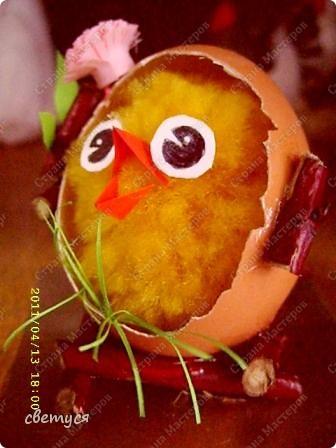 Цыпленок Цыпа фото 3